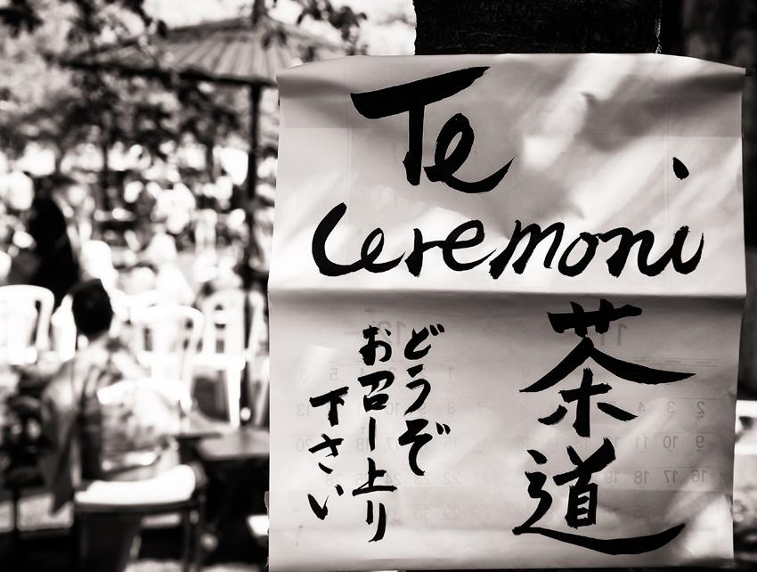 Sakura-blog-07